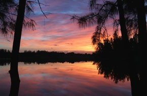 A beautiful sunrise in Markham Park