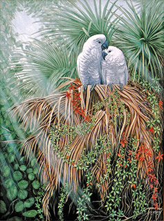 Art by Ed Usher featuring birds in foliage